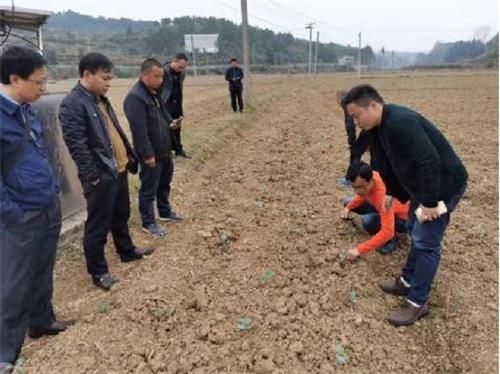 重庆农科院专家赴屏