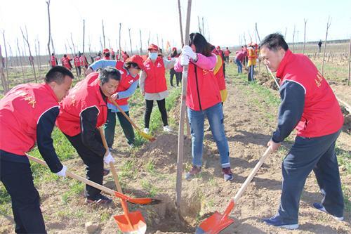 齐河县司法局组织参加义务植树活动